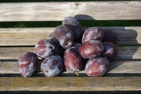 saisonale schweizer Früchte