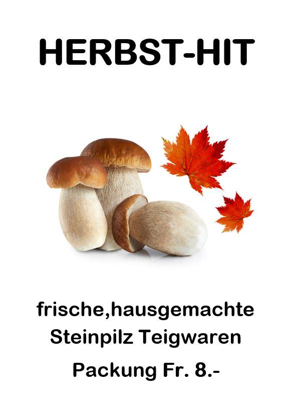 Steinpilz Snipp